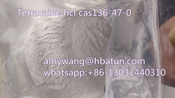 Tetracaine hcl cas136-47-0,shijiazhuang,Agriculture,Honey,Artisan & Herbs,77traders