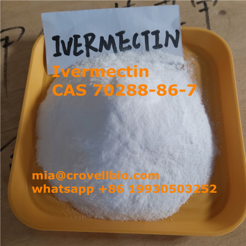 Find Ivermectin powder CAS 70288-86-7 supplier manufacturer in China (,sjz,Services,Health & Beauty,77traders